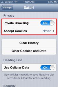 Safari for iPhone private browsing