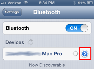 iPhone Bluetooth screen
