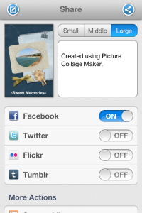 share picture collages across multiple social networks