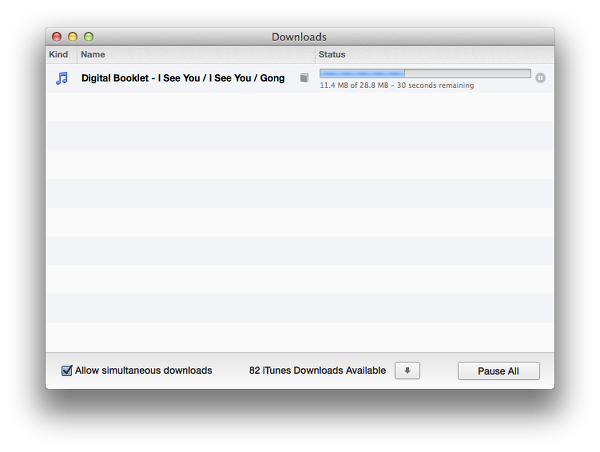 You can't download an iTunes digital booklet on an iPad
